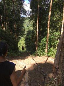 Start für eine 400 Meter lange Fahrt mit der Zipline über den Urwald © 2017
